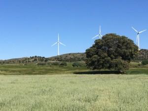 Energía Eólica Herïma Gestión Medioambiental